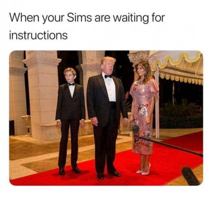 When Your Sim Is Waiting For Instructions