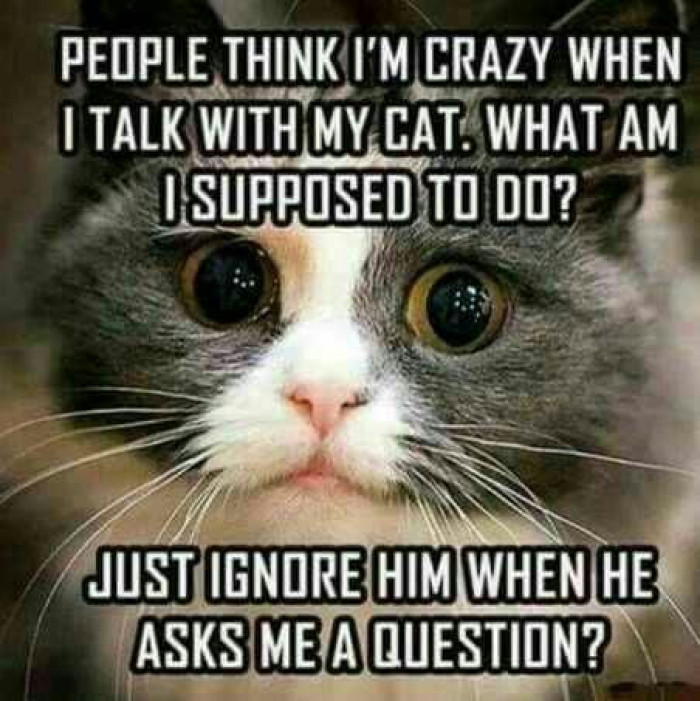 Cat People Know