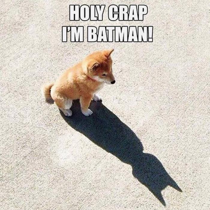 I Am A Batman