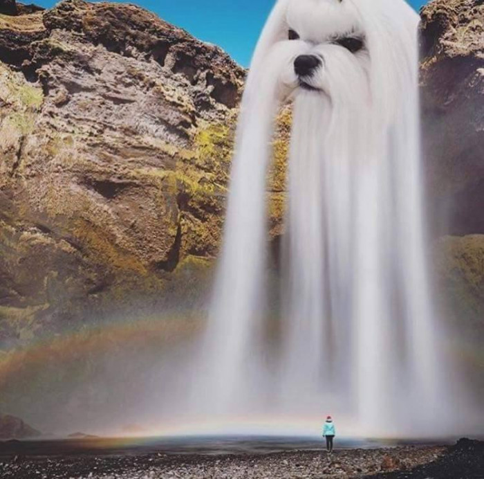 Lets Go To Waterfall