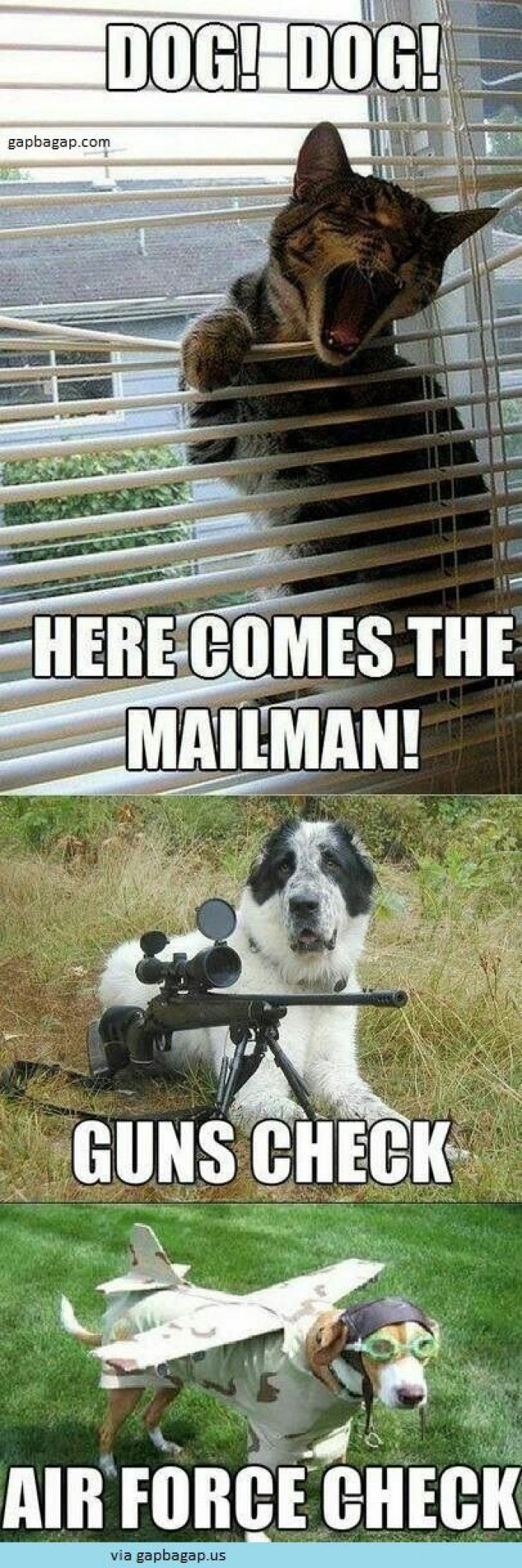 The Mailman Is Coming