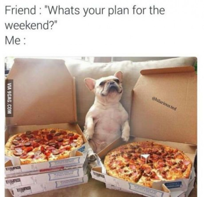 Who Needs Friends? Pizza Is My Friend