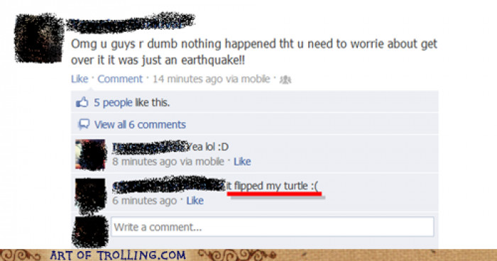 Think Of The Turtles