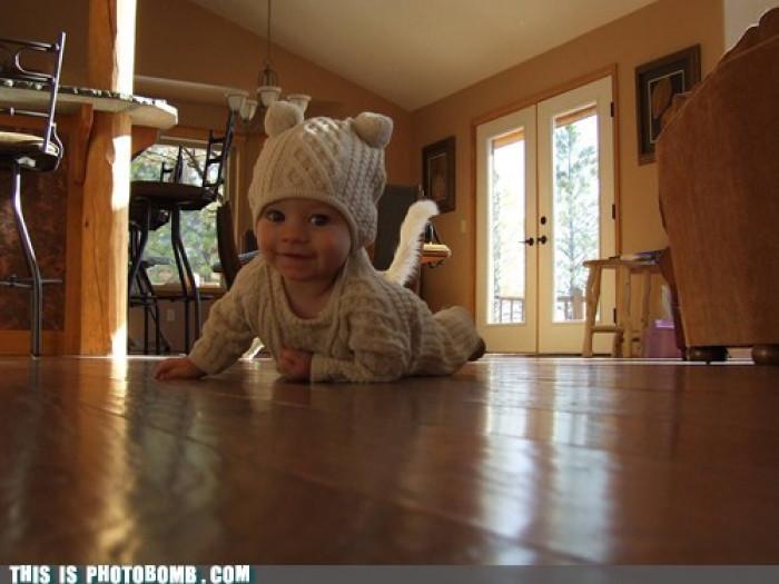 Toddler Tail