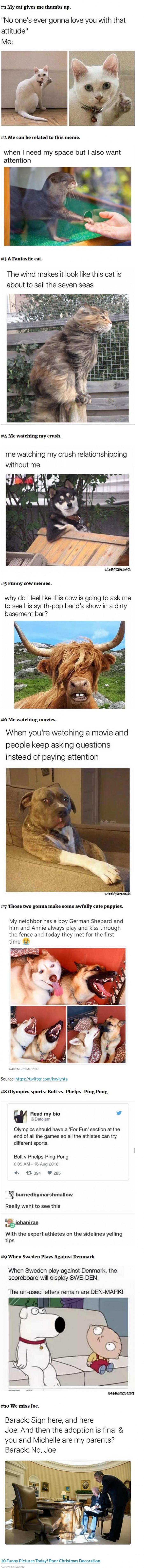10 Fresh Memes Today