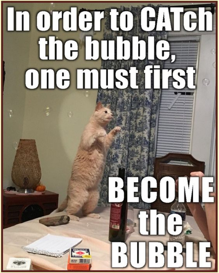 In Order To Catch The Bubble One Must Become The Bubble
