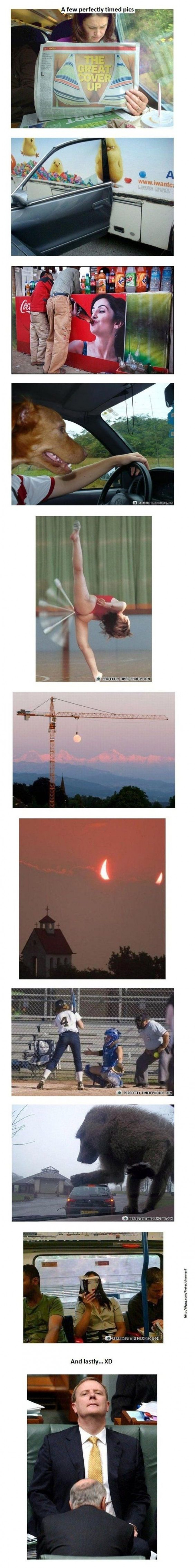 More Perfectly Timed Photos You Must See