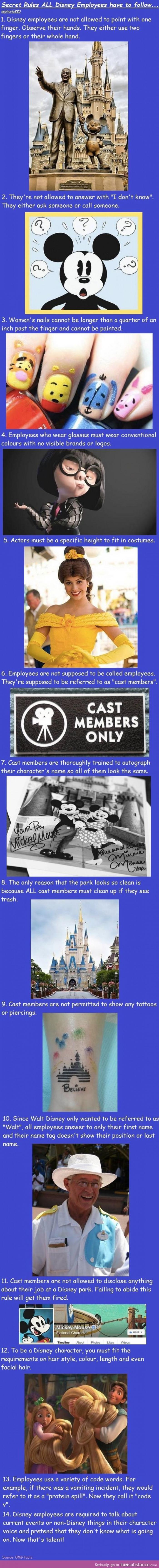 10 Secret Rules Disney Employes Must Follow