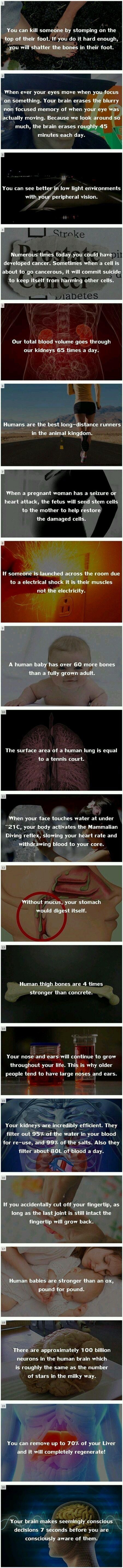20 Amazing Facts That Will Change Your Life