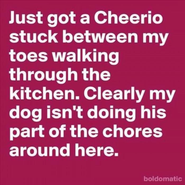 Get To Work Puppy