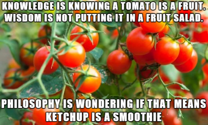 Is Ketchup A Smoothie?
