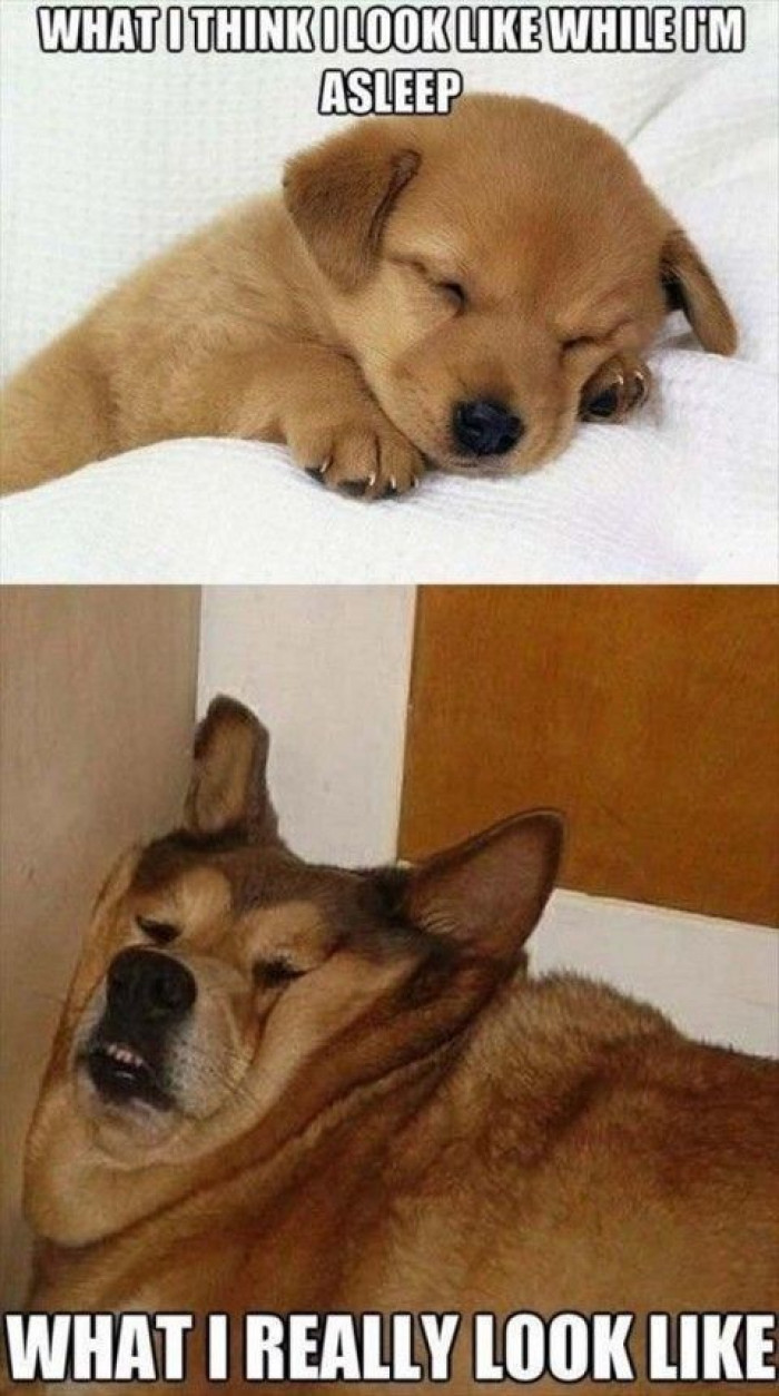 Sleeping What I Look Like