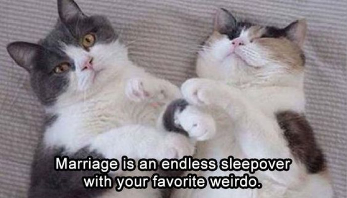 Summing Up Marriage