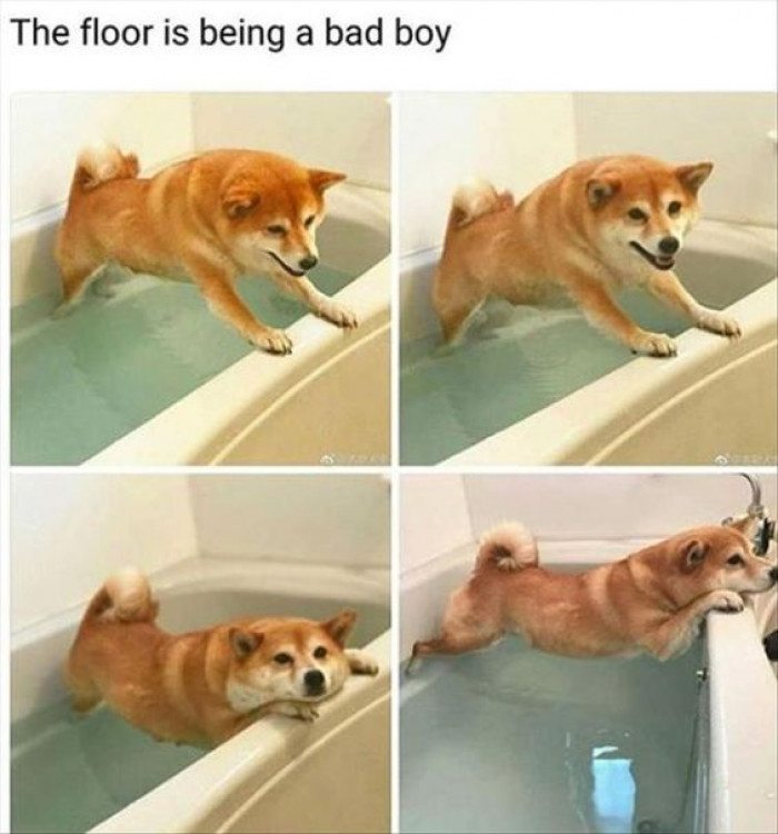 The Floor Is Being A Bad Boy