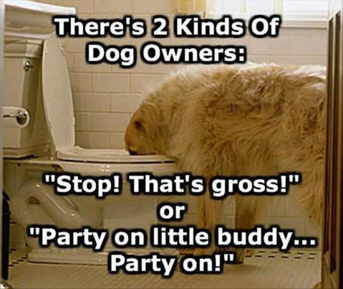 There's Two Types Of Dog Owners