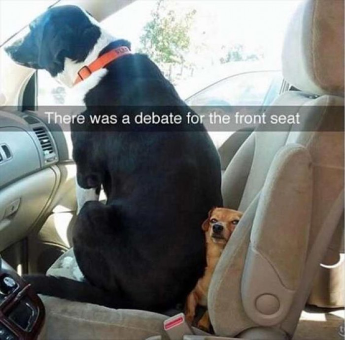 There Was A Debate Over The Front Seat