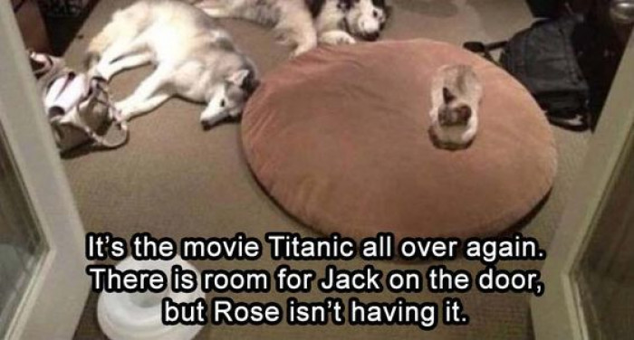 Titanic Number Two
