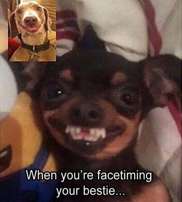 When You're Facetiming Your Bestie