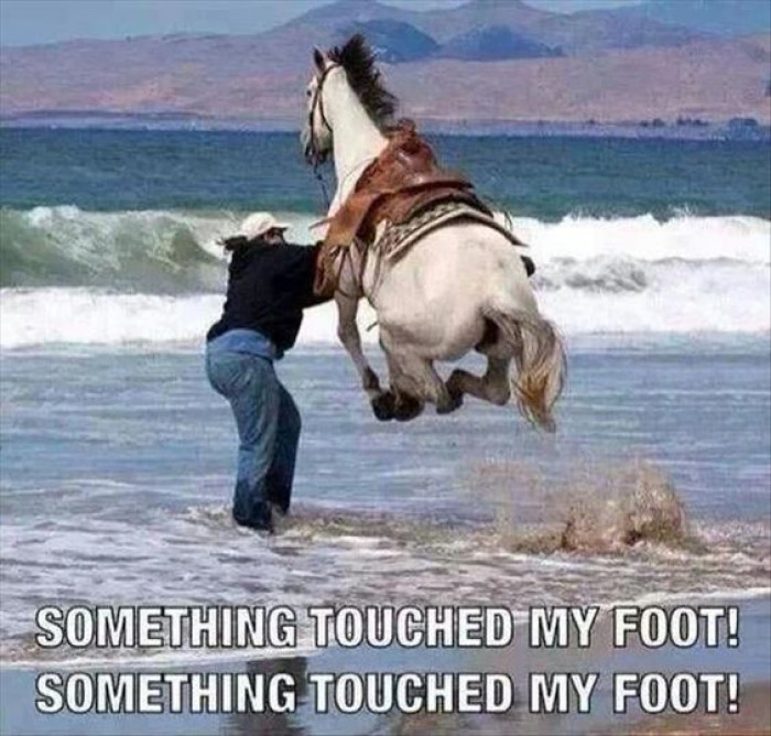 Whenever I Go To The Beach