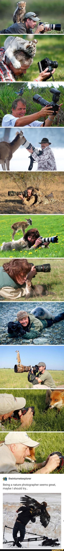 Wildlife Photography Seems So Much Fun...