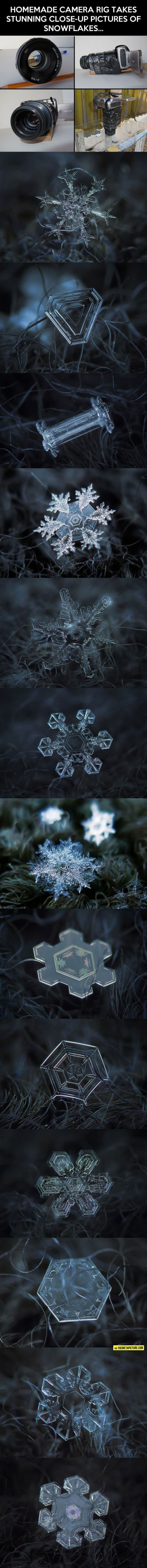 You Never Thought Snowflakes Could Be This Beautful