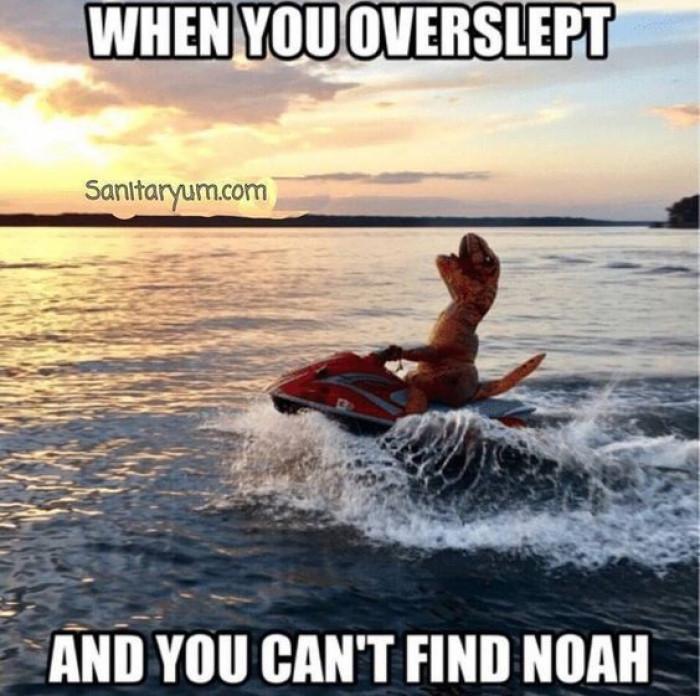 Come Back Noah