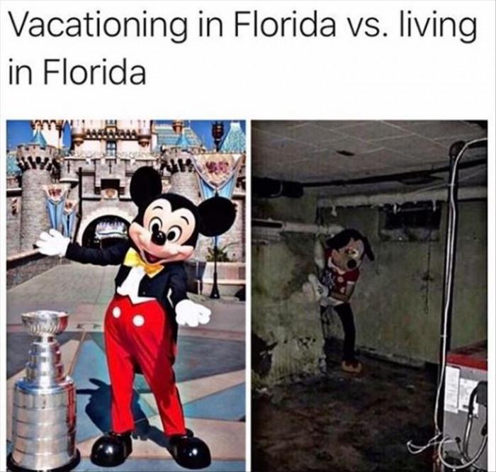 Florida Vacation Vs Living