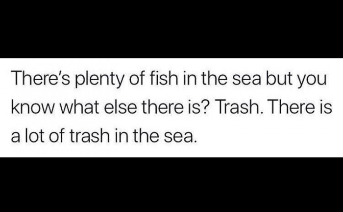 Trying To Find The Perfect Fish Among The Trash
