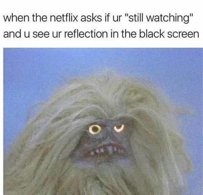When Netflix Asks If You're Still Watching...