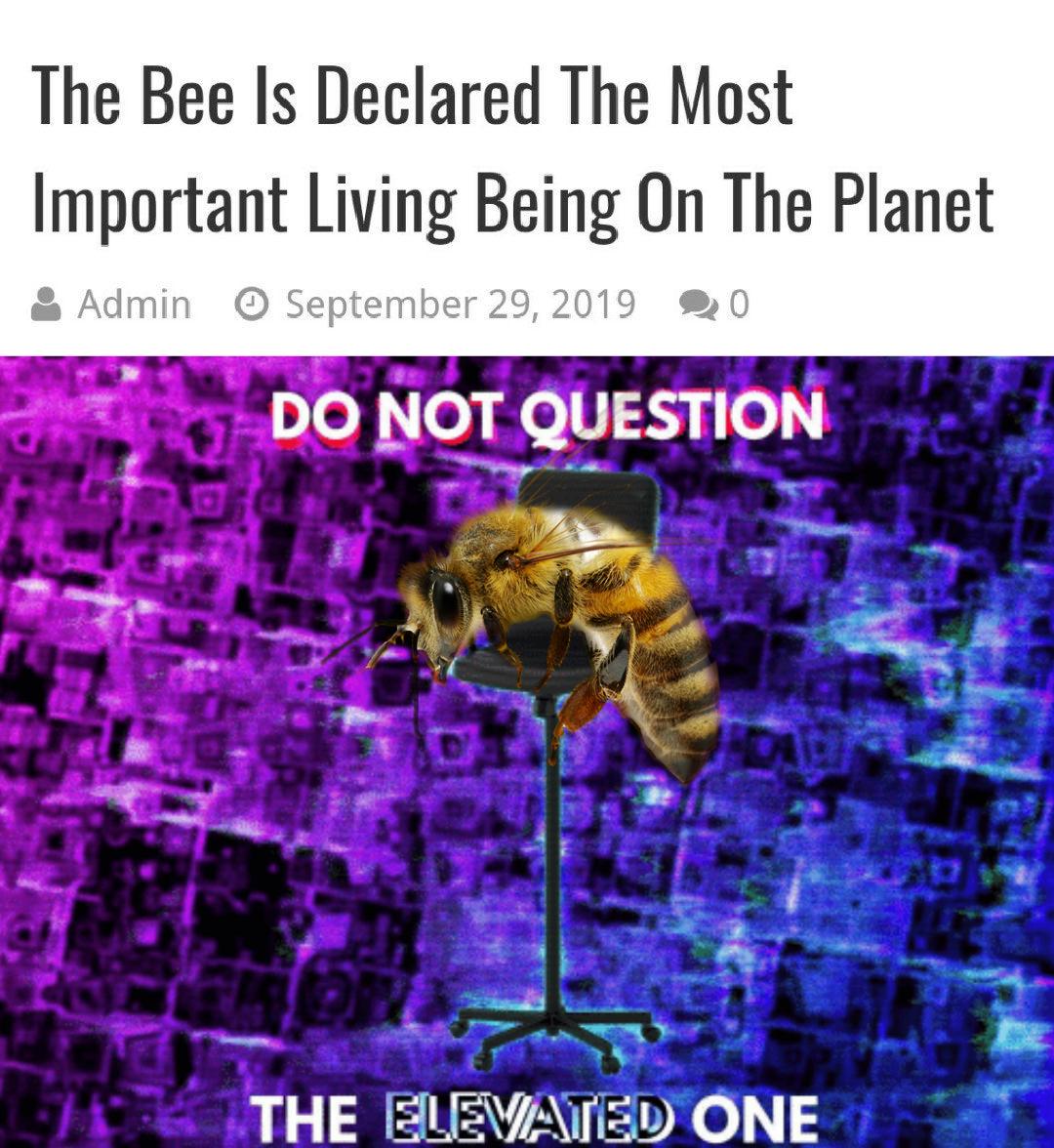 Bees good