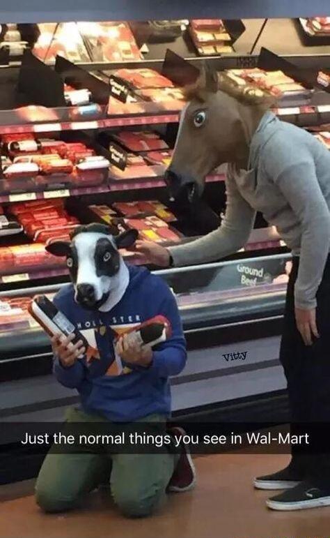 *sad cow noises*