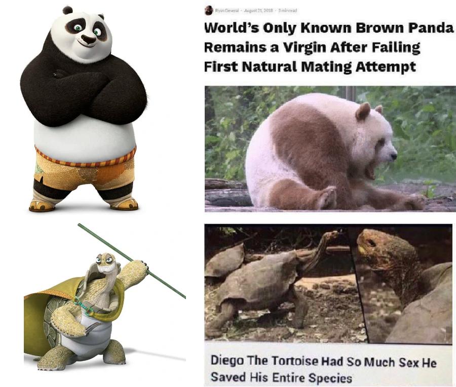At the start of Kung Fu Panda 1