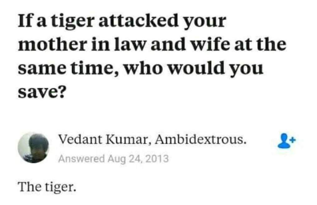 Can confirm, I am the Tiger