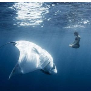 15 Photos That Will Make You Terrified Of Swimming