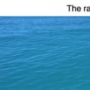 15 Photos That Will Make You Think Twice About Going Swimming