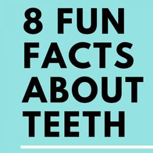 8 Fun Facts About Teeth