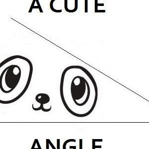 A Cute Angle
