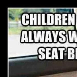 Always Wear A Seat Belt