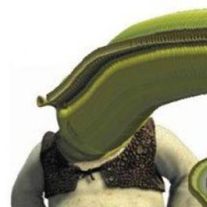 before you Shrek yourself