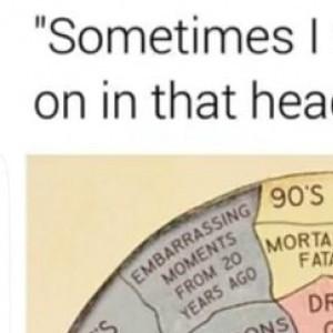 brain content