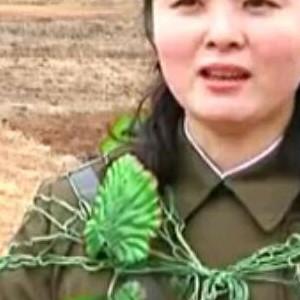 Cammo, North Korea Style
