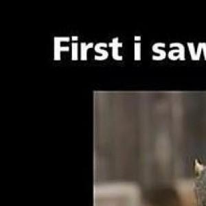 Epic Squirrel Photoshop Battle