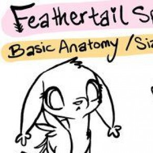 Feathertail Species Guide