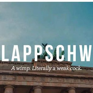 German Insults We Need In English
