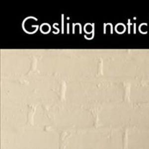 Gosling Noticing The Paparazzi