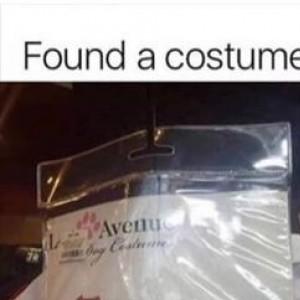 Hoe Ass Halloween Dog