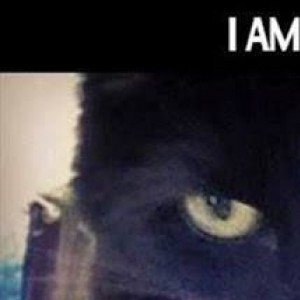 I am Cat and Man