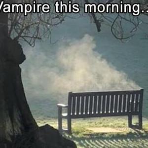 I Missed The Vampire