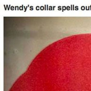 Once You See These 25 Things You Cannot Unsee Them