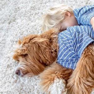 Oregon foster child and labradoodle's unique friendship